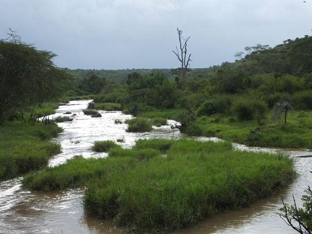 The river that runs through the ranch the day we arrived